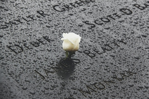 Read more about the article SEPTEMBER 11th